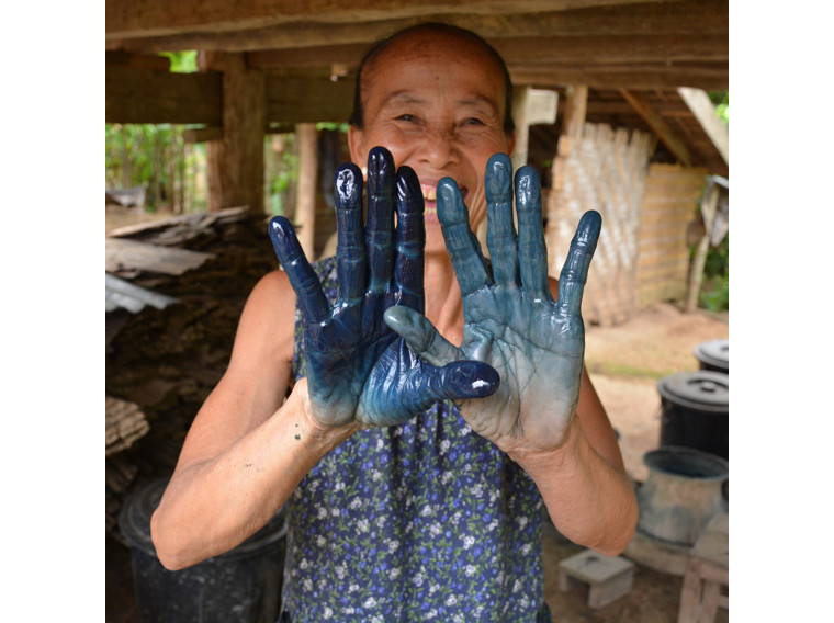 Laos indigo